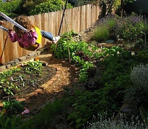 Self Sufficient Backyard Ideas : Ea O Ka Aina Very SmallScale Agriculture