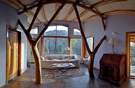 Ea O Ka Aina Building With Whole Trees