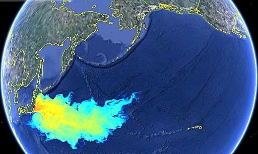 Ea o ka aina radioactive plume update for Pacific ocean radiation fish