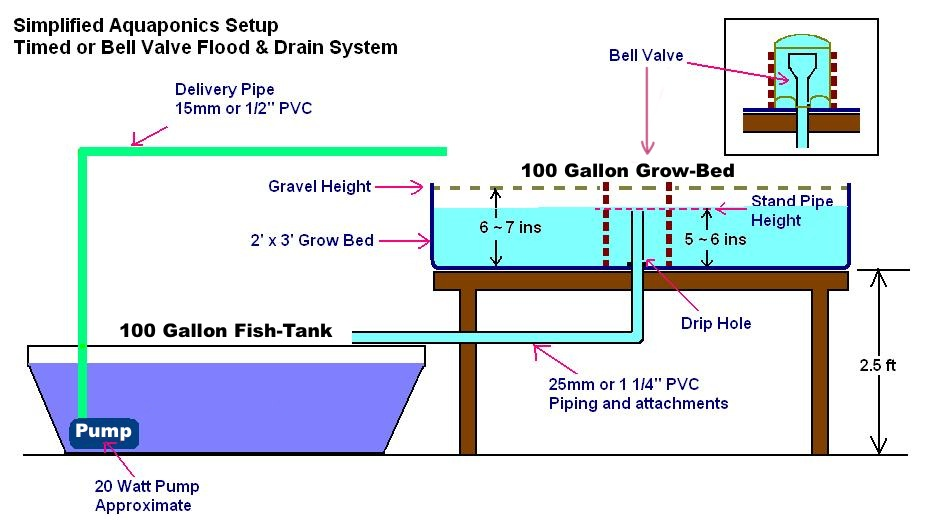 image above: simple 100 gallon aquaponics diagram from affnan's