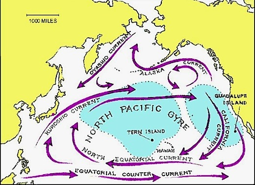 Ea O Ka Aina: Radioisotopes in the Northern Pacific