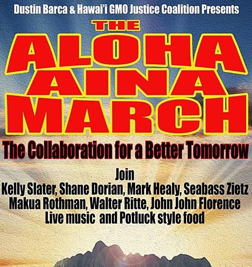 http://www.islandbreath.org/2013Year/12/131208marchbig.jpg