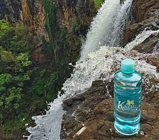 Ea o ka aina truth about hawaiian bottled water image above kauai natural artesian water promotional photo showing a waterfall background thats not where this water comes from sciox Gallery