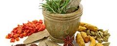 http://islandbreath.blogspot.com/2014/02/making-sauerkraut-at-home.html